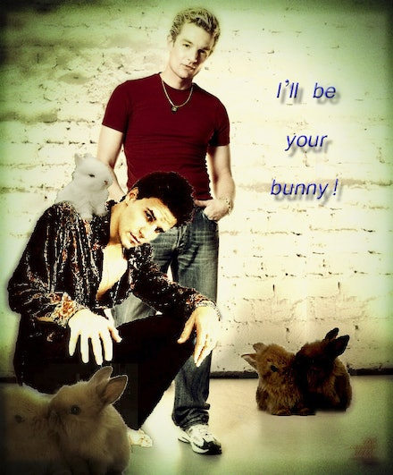 your_bunnyh