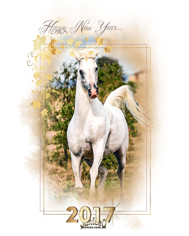 happy_new_year_van_sm