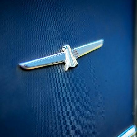 The Bird - The iconic Thunderbird Badge