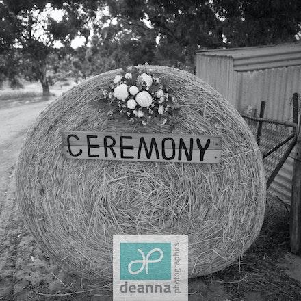 Cooley - Wedding Tintinara SA