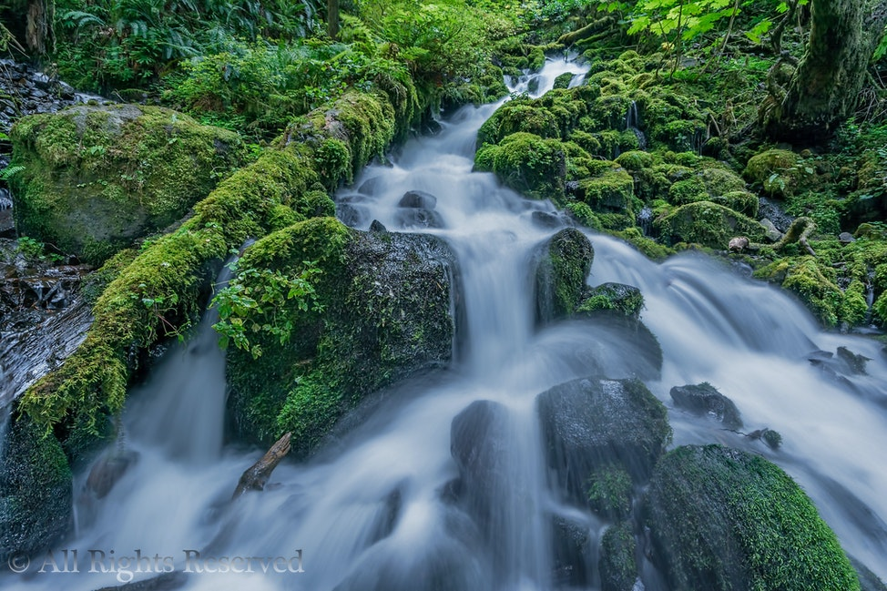 Wahkeena Creek 2-Edit-Edit