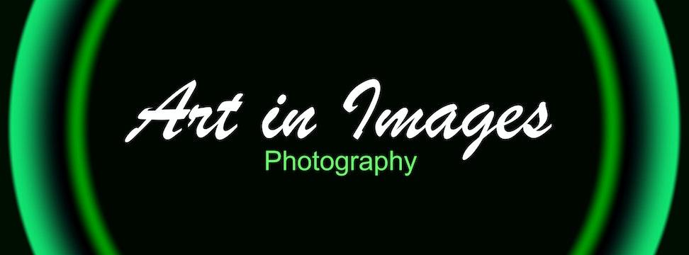 Art in Images Logo