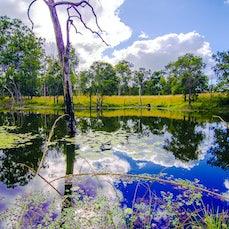 Australian Bush Scenes - Aussie Landscapes
