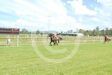 Race 2 Odelia