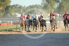 Race 5 San Severo