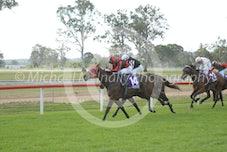 Race 4 Blackjack Princess