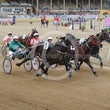 Ekka Harness Racing 16 08 15 - Photos taken by Michael McInally