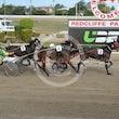 Race 4 Mister Fantangles