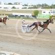 Race 5 Big Lucy