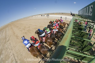 Birdsville Racing Carnival 2015 - Photos taken by Michael McInally  Images are under copyright and are not to be use without permission