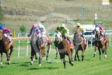 Race 4 Jai's Luck