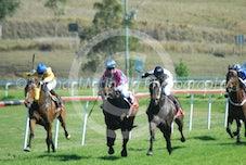 Race 5 Beaufort Gyre