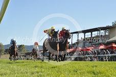 Race 6 Electric Dee Jay