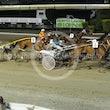 Race 7 Gold Hallmark