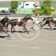 Race 5 Sir Jaybe Hall
