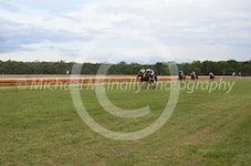 Race 5 Rathgibbon