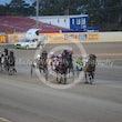 Race 5 Annas Best