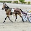 Race 2 Master Montana