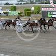 Race 5 Illawong Dreamtime