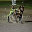Race 7 Datsgood