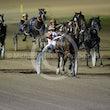Race 8 Pinup Boy