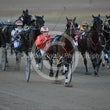 Race 1 Steveejay