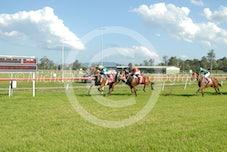 Race 5 Zendaye