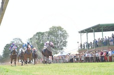 Race 1 Court Rules
