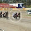 Race 5 Nice One John