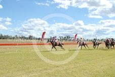 Race 3 Claragh