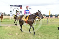 Race 4 Gilded Spirit