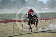 Race 5 Hariir