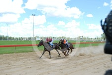 Race 3 Grand Edgeroi