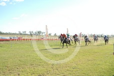 Race 6 Sir Titanite