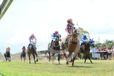 Race 2 Bismarc