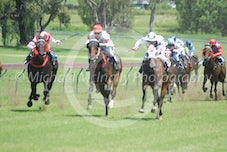 Race 1 Crafty Aquila