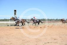 Race 2 Mower