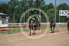 Race 3 Sandy Straits