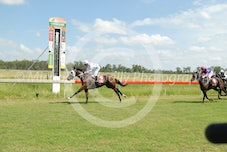 Race 2 Crafty Aquila