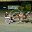 Race 8 Bronski Mackenzie