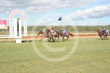 Race 5 Canid