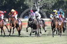 Race 6 Maxwell