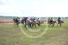 Race 3 Singaraja