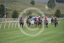 Race 6 Mustarrid