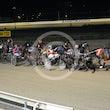 Race 6 Joey Tee