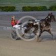 Race 1 Mr Meddle