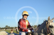 Arabian Race 1 Lindall La Vita