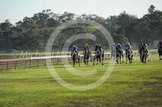 Race 6 Rahdane