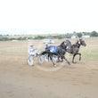 Race 7 Zalta