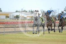 Race 2 Greynomad